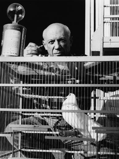 Picasso y sus palomas