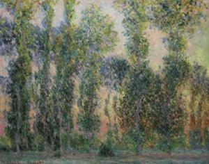 El paraíso de Monet
