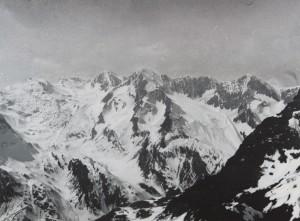 Los Alpes de Rudolf Stingel