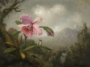 Naturaleza en evolución – Espai Carmen Thyssen, Sant Feliu de Guixols. Hasta el 14 de octubre