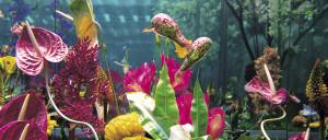 Flores y artistas: un idilio apasionado