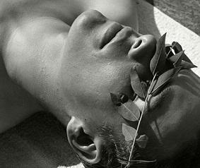 List, sensualidad bajo el sol